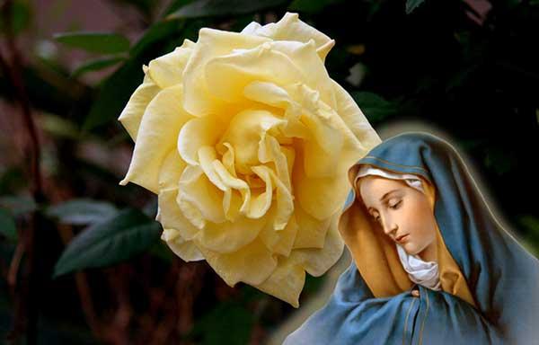 The Sorrowful Hail Mary