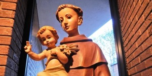 13 DAY NOVENA TO ST. ANTHONY OF PADUA