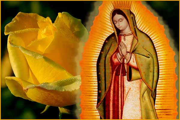 MEMORARE TO OUR LADY OF GUADALUPE